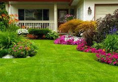 Websites Can Help You Find the Right Gardener or Construction Worker for Your Project