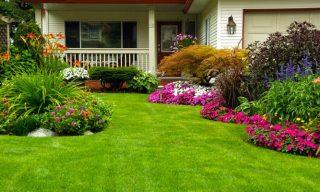 landscape gardeners1