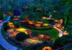Making your garden more multifunctional
