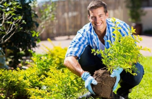 Make the Most Out of Your Garden This Summer