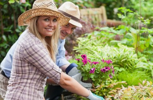 Buying Smart Cart Can Help You With Your Gardening