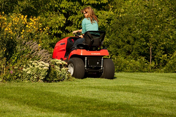 Maintenance of Lawn