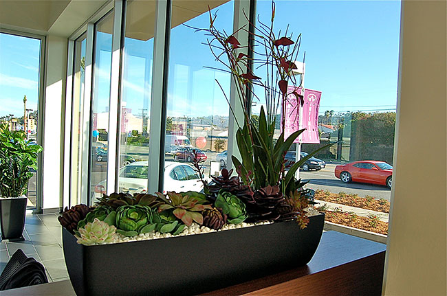 Artificial Plant Environments1