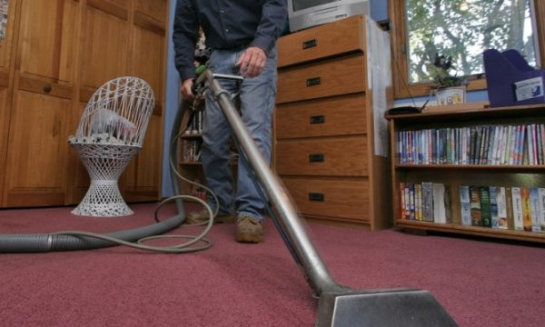 The Number of Times You Must Clean Your Carpet: Read Further To Know More