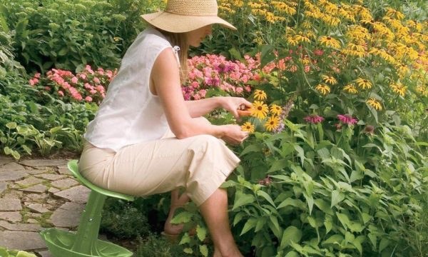 How to Rethink Residential Gardening for Climate Change