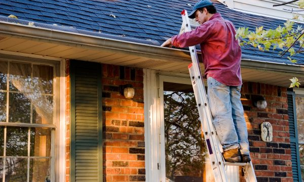 Why You Should Inspect Your Roof This Summer