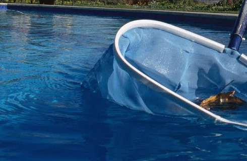 Importance of Cleaning your Swimming Pool Regularly